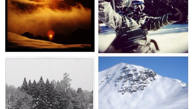 Week 4: Ski montage - top left corner Hotham, Utah, NZ, Japan by @poynts