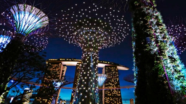 The giant concrete structures of the Supertree Grove are illuminated against the dusk sky at the newly opened Gardens by the Bay.