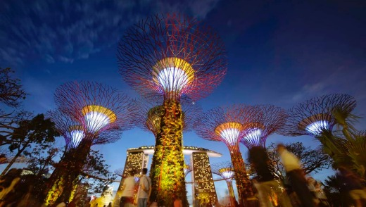 The 101-hectare gardens, situated at the heart of Singapore's Marine Bay, cost $773 million to build and house over a ...