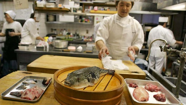 Rare treat... diners pay a premium for fugu.