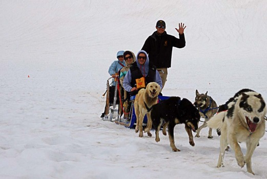 ... or ride a genuine dog sled across the top of the Mendenhall Glacier in Juneau.