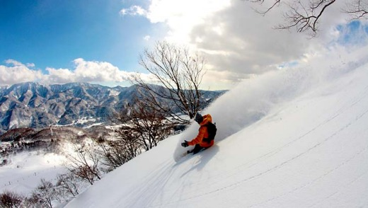 Skier numbers to Japan understandably dropped last year, but this year this year the bookings are booming.