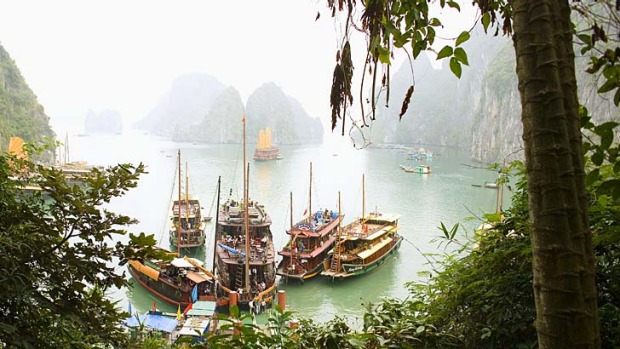 Crowded shore ... thousands of junks and tourist boats ply the waters of Halong Bay.