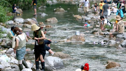 You can lie under a tree listening to Japanese jazz-fusion or cool your feet in the stream at the Fuji Rock festival.