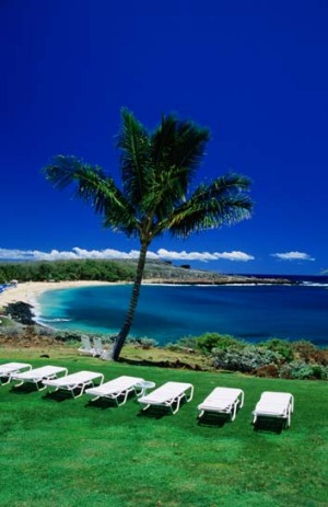 Billionaire Larry Ellison will turn Lanai, the sixth largest island in the US state of Hawaii, into an environmental ...