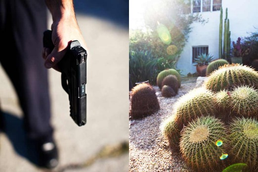 Echo Park: <i>Suddenly from behind the Golden Barrel cactus a man leapt out with a gun</i>