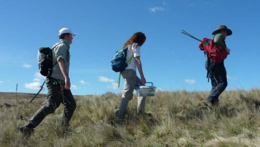 Tim McGrath, Emma Carlson and Matt Young head off into the Monaro grasslands for a spot of dragon hunting