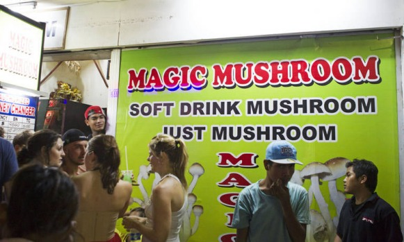 Magic mushroom shakes a favourite of many tourists visiting Bali and openly available in Kuta.
