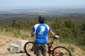 Mount Lofty has expansive views and 130 species of native animals.