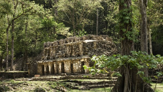 Yaxchilan archeological site in the jungle.