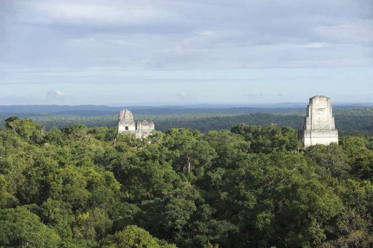 Mayan temples at the Tikal archaeological site in Peten departament, 560 kms north of Guatemala City, on December 19, ...