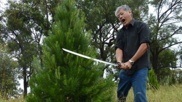 Keng Tan, the Christmas Tree man, demonstrates the unusual way he prunes his Christmas trees – with a samurai sword!