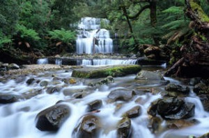 Burning calories...Liffey Falls.