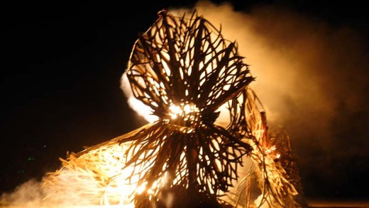 Flaming good times ... a seed pod alight.