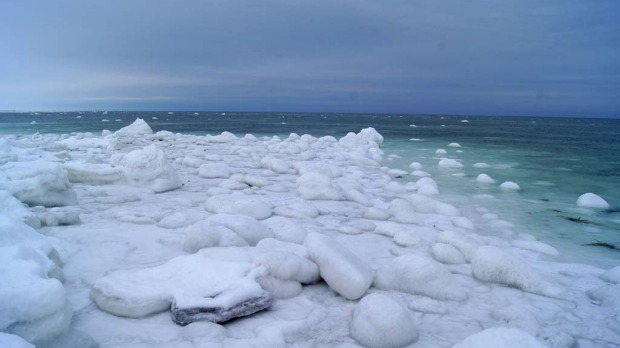 The shoreline of Hudson Bay, near Seal River Lodge.