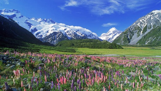Colours abound in the Southern Alps.