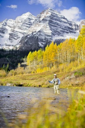 Colorado gold ... autumn leaves shimmer as a fisherman casts a line at the foot of the Maroon Bells.