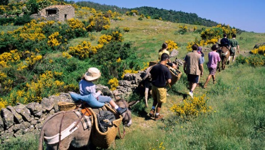 A donkey ride in Cevennes, France.