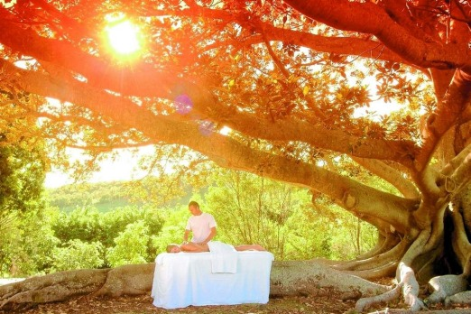 The Golden Door Health Retreat - Elysia in the NSW Hunter Valley. The experience: Brain reboot, check. Body