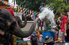 Elephants spray water at tourists in celebration of the Songkran water festival in Thailand's Ayutthaya province, about 80 km north of Bangkok.