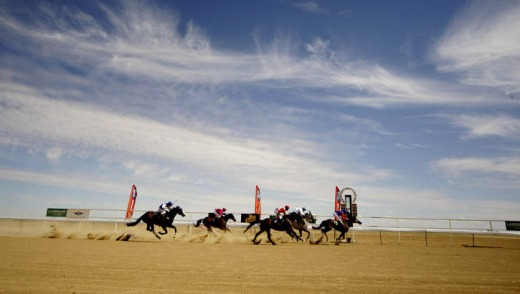 It's not high culture, but it's fun ... the Birdsville Races.