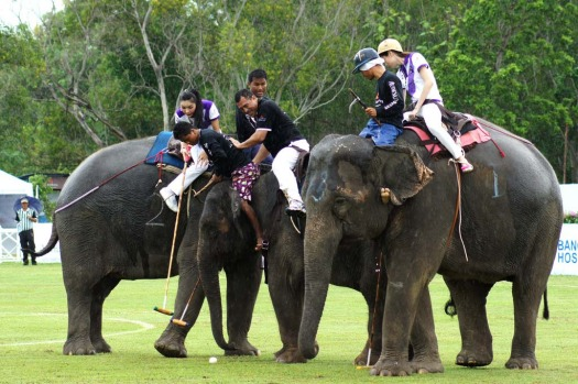 The Tiffany's team of ladyboys takes on the former All Blacks in the King's Cup elephant polo tournament.