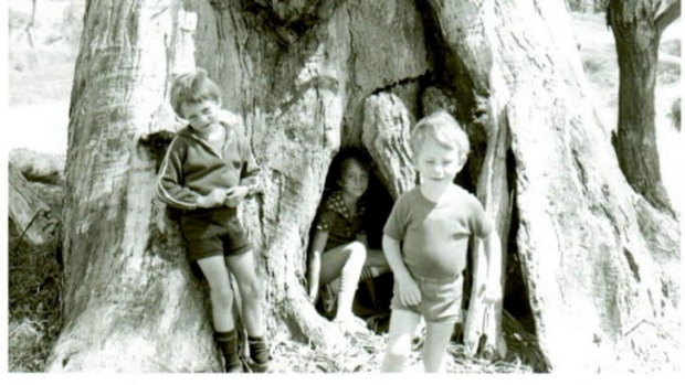 Sean, Kelly and John Woodland play at the Fairy Tree in the Spring of 1977.