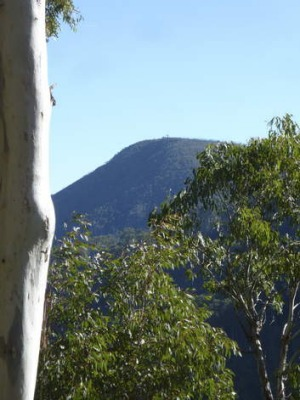 Black Jack Mountain as viewed from the Ogilvies Creek fire trail.
