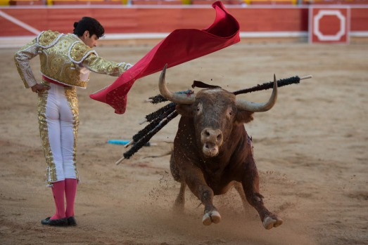 Bullfighter Alberto Lopez Simon performs with a Alcurrucen's fighting bull during the second day of the San Fermin ...