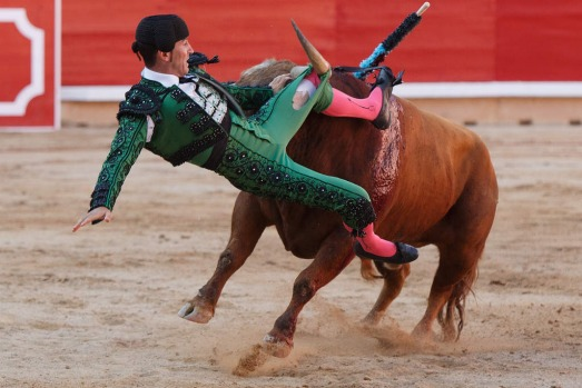 Image result for bullfighting gone wrong