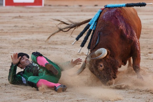 Bullfighter 'banderillero' David Peinado 'Chetu' is tossed and gored in the head by a Alcurrucen's fighting bull in the ...