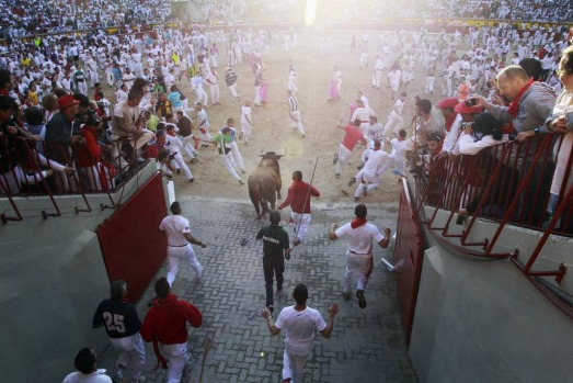 Runners lead an Alcurrucen fighting bull into the bull ring during the first running of the bulls of the San Fermin ...