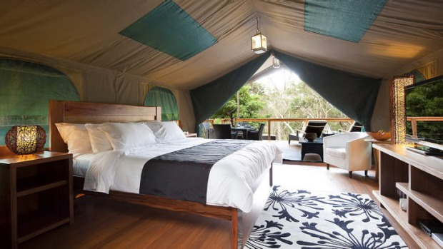 Luxury camping in  Lane Cove River Tourist Park.