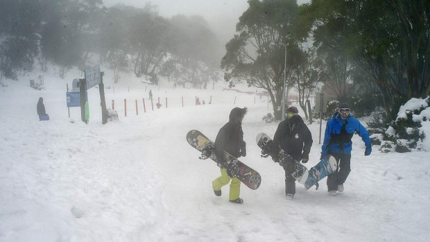Visitors to Mount Baw Baw's Alpine Resort head for the slopes with their snow boards.