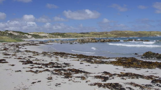 Bright and breezy: King Island is prone to wind, rain and sunshine - often in one day.