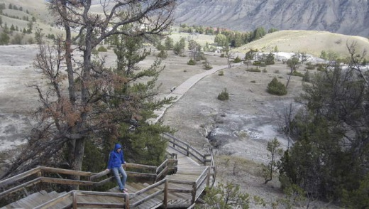 Deserted: Owen Kelly (the reporter's son), of Sydney, near Mammoth Hot Springs.