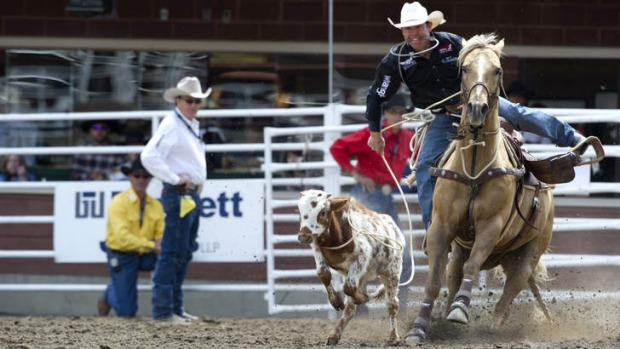 Gotcha: Man, horse and teeth  at the Calgary Stampede.