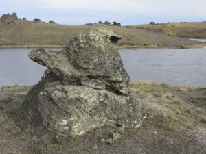 SIMULACRUM CORNER ... Donald Duck Rock at Manorburn Lake, in New Zealand.