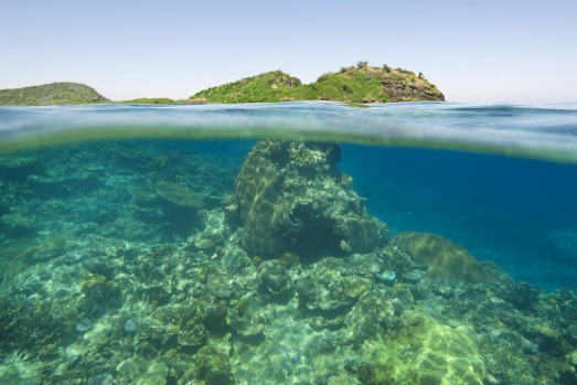 Underwater and overwater, Yasawa Islands, Fiji.