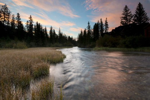 Sunrise on Little Stream, Alberta, Canada.