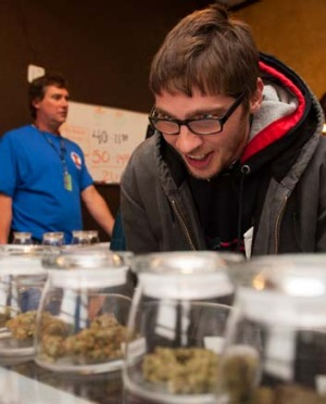 Munchies: a visitor from Ohio eyes the selection of products at 3D Cannabis Centre in Denver.