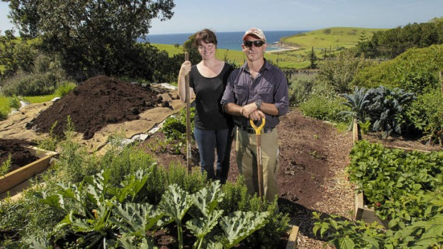 Back to nature: Fiona and Adam Walmsley at Buena Vista Farm. They sell free-range eggs, pork and organic vegetables.