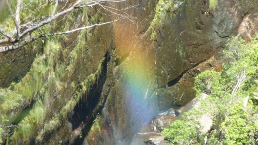 A rainbow in the gorge below Carrington Falls lookout