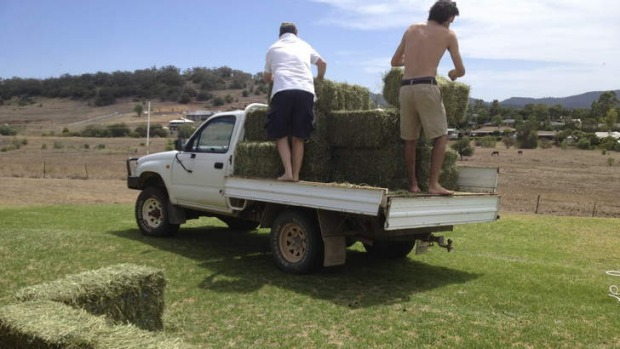 Step1: Layout 14 bales of hay in the shape of a pool.