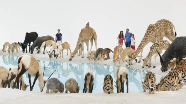 Star attractions: Cai Guo-Qiang's <i>Falling Back to Earth</i>.