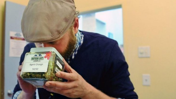 A Texan visitor smells a variety of marijuana called Agent Orange at the Northern Lights Cannabis Co in Edgewater near ...