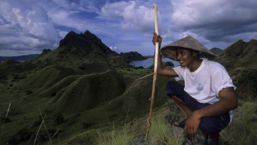 A villager surveys the Komodo Island terrain.