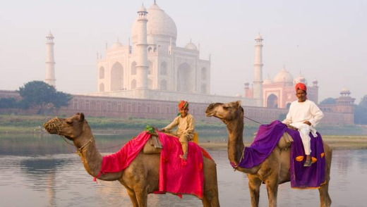Riding camels in the Yamuna River in front of the Taj Mahal.