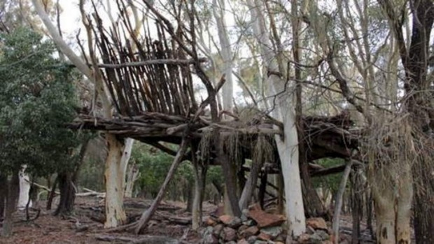 The Majura Treehouse soon after completion in 2011.