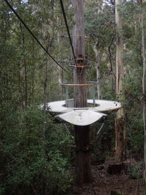 Pictures of a zipline which has been built in Tasmania.